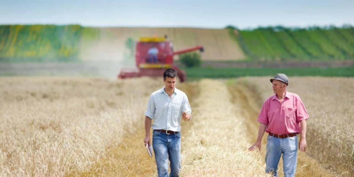 Farmers 2800229