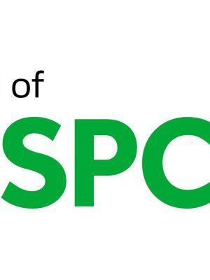 Nspcc logo2