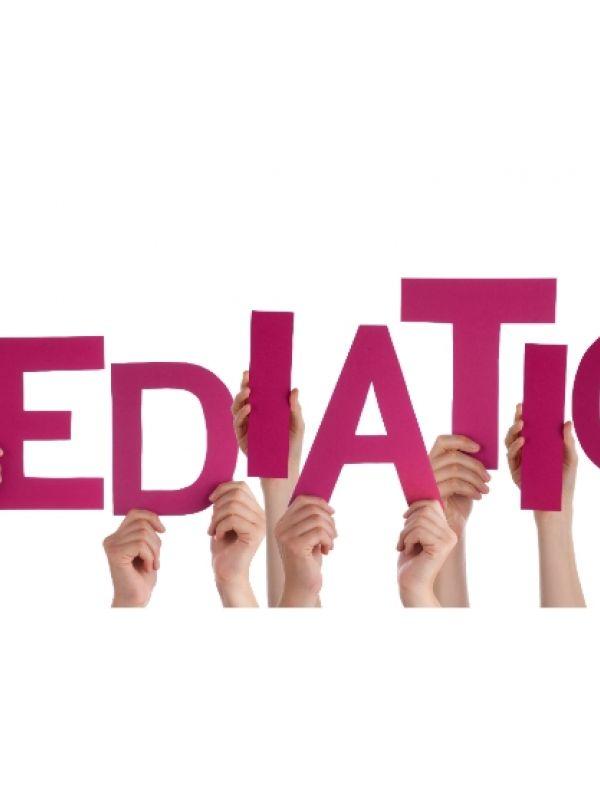 Mediation Employment