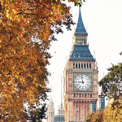 Autumn Statement 2016 - an employment law breakdown