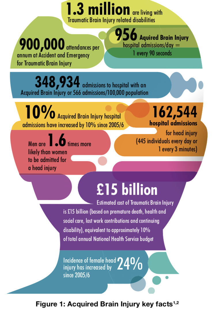 Graphic taken from Time for Change showing some of the statistics surrounding ABI